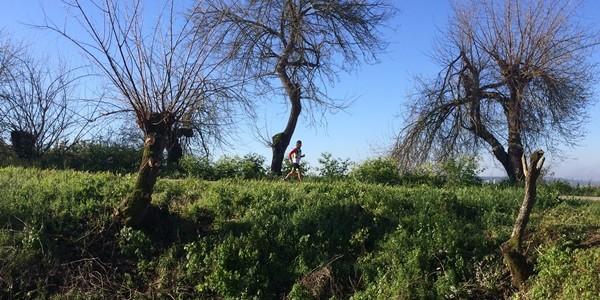 E31: Mardi 1er mars // Mouriscas – Ribeira de Santarem